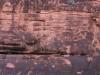 Grand Canyon MD2014 (106)-1280