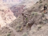 Grand Canyon MD2014 (1072)-1280
