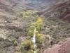 Grand Canyon MD2014 (1090)-1280
