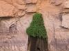 Grand Canyon MD2014 (264)-1280