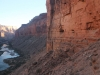 Grand Canyon MD2014 (405)-1280