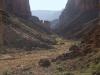 Grand Canyon MD2014 (424)-1280