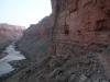 Grand Canyon MD2014 (442)-1280