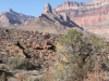 Grand Canyon MD2014 (491)-1280