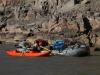 Grand Canyon MD2014 (813)-1280