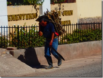 Man carrying sticks honduras